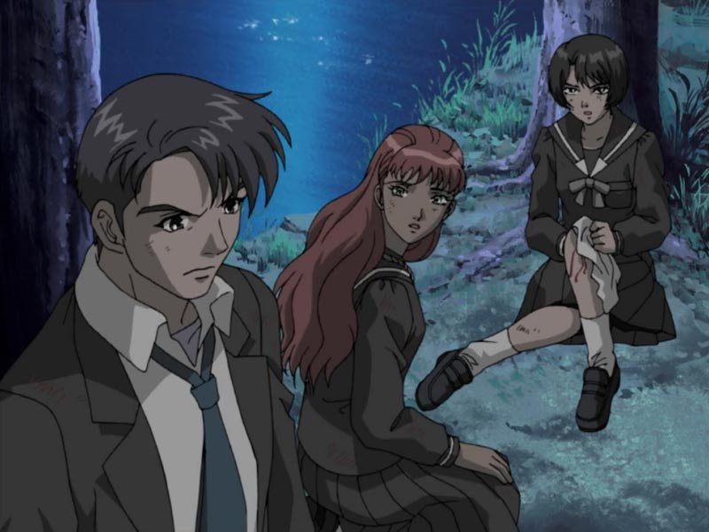 アニメ版十二国記オリジナルキャラも登場